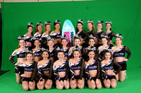 Premier All Stars-Icons